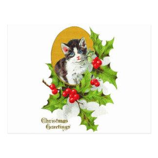 Kätzchen in den Stechpalmen-frohen Weihnachten Postkarte