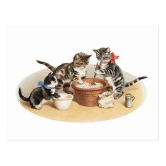 Kätzchen in der Küche Postkarte