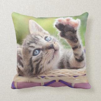 Kätzchen in einem Korb Kissen