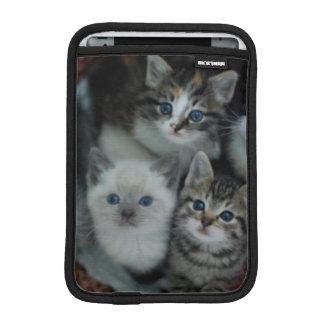Kätzchen in einem Korb Sleeve Für iPad Mini