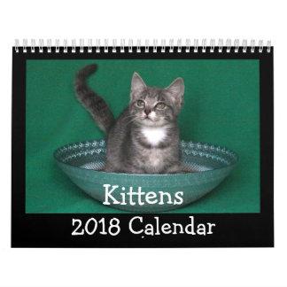 Kätzchen-Kalender 2018 Abreißkalender