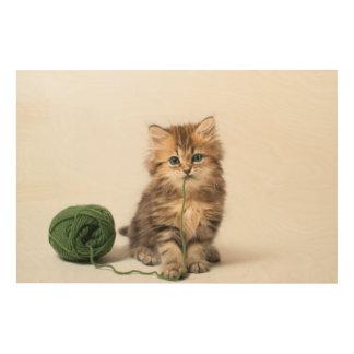Kätzchen mit grünem Garn Holzdruck