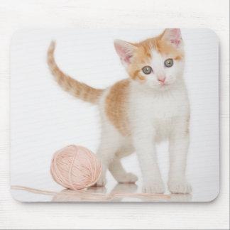 Kätzchen nahe bei Ball der Schnur Mousepad