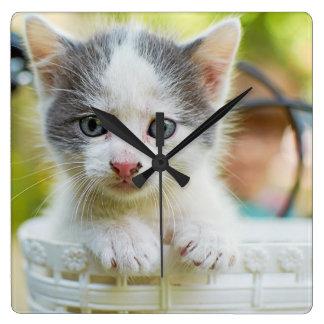 Kätzchen reitet ein Fahrrad Quadratische Wanduhr