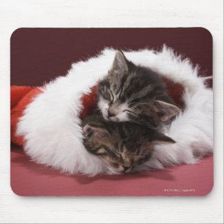 Kätzchen schlafend zusammen im Weihnachtshut Mousepad