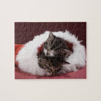 Kätzchen schlafend zusammen im Weihnachtshut Puzzle