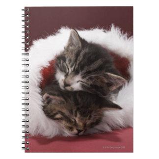 Kätzchen schlafend zusammen im Weihnachtshut Spiral Notizblock
