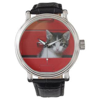 Kätzchen-Spähen Uhr