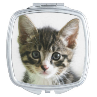 Kätzchen-Starren Taschenspiegel
