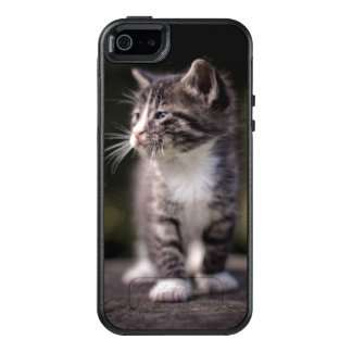 Kätzchen-stehendes hohes OtterBox iPhone 5/5s/SE hülle