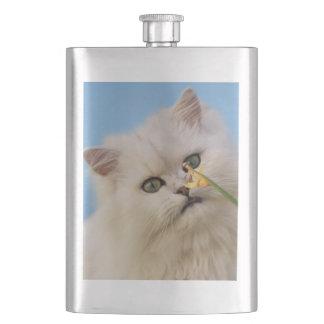 Kätzchen, welches die Narzisse liebt Flachmann