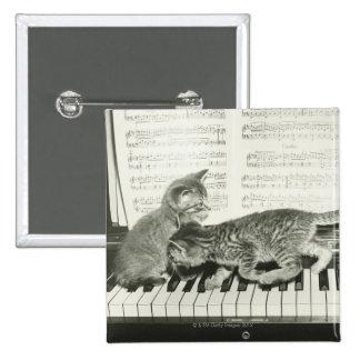 Kätzchen zwei, das auf Klaviertastatur spielt, (B& Quadratischer Button 5,1 Cm