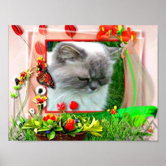 Katze1 für Lilo Poster