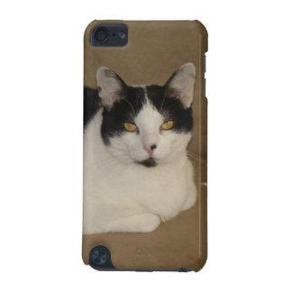 Katze auf einer Couch iPod Touch 5G Hülle