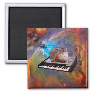 Katze auf einer Tastatur im Raum Quadratischer Magnet