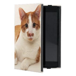 Katze auf weißem Hintergrund iPad Mini Etui