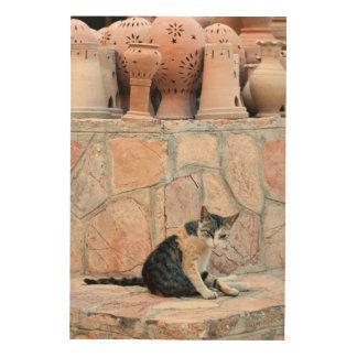 Katze bei Nizwa Souq Holzwanddeko