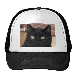 Katze Caps