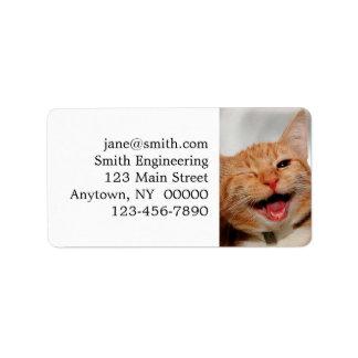 Katze, die blinzelt - orange Katze - lustige Adressaufkleber