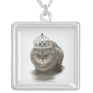 Katze, die eine Tiara trägt Versilberte Kette