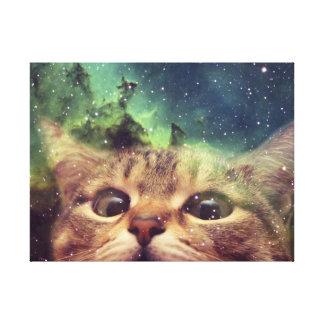 Katze, die in Raum anstarrt Leinwanddruck