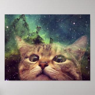 Katze, die in Raum anstarrt Poster