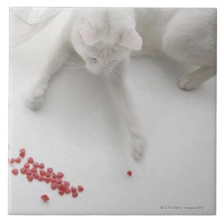 Katze, die mit geformter Süßigkeit des Herzens Große Quadratische Fliese