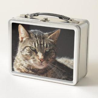 Katze, die sich sonnt metall lunch box