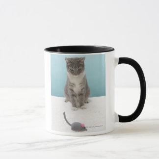 Katze, die Spielzeugmaus auf Wolldecke betrachtet Tasse