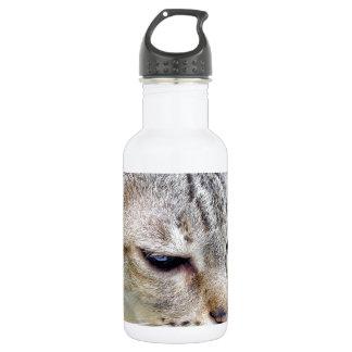 Katze Edelstahlflasche