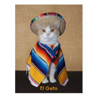 Katze EL Gato im Sombrero und in Serape Postkarte