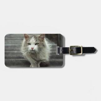 Katze Gepäckanhänger