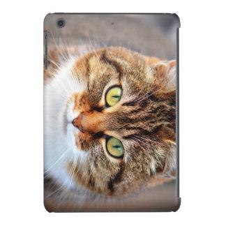 Katze iPad Mini Retina Schalen