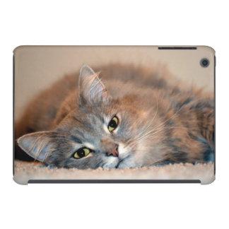 Katze iPad Mini Retina Hülle
