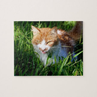 Katze im Gras Puzzle