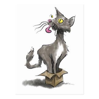Katze im Kasten Postkarte