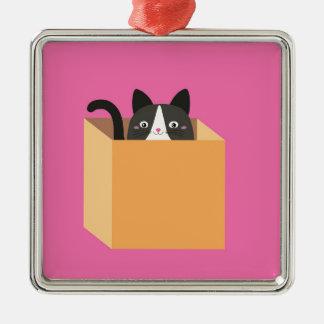 Katze im Kasten Quadratisches Silberfarbenes Ornament