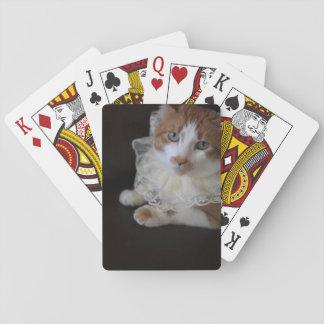 Katze im Spitzen- Kragen Spielkarten