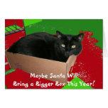 Katze in der Kasten-Weihnachtskarte