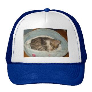 Katze in einem Hut Baseball Kappe