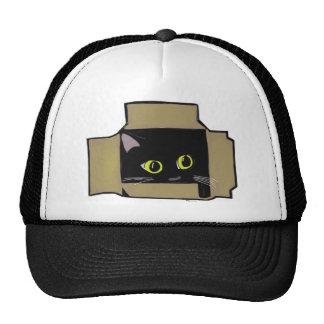 Katze in einem Kasten Baseballkappen
