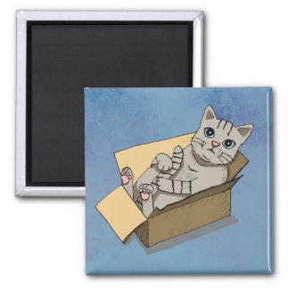 Katze in einem Sammelpack Quadratischer Magnet