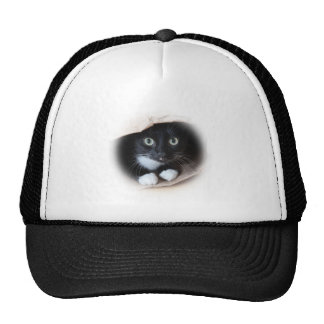 Katze in einer Tasche Trucker Mütze