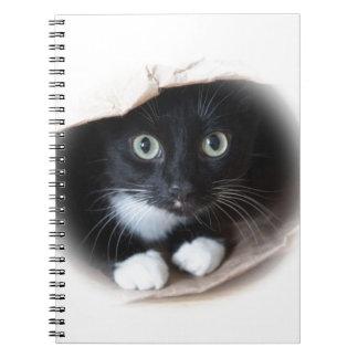 Katze in einer Tasche Notizblock