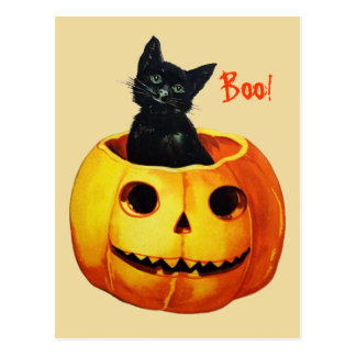 Katze in Kürbis-Vintager Halloween-Postkarte Postkarte