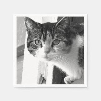 Katze in Schwarzweiss Papierservietten