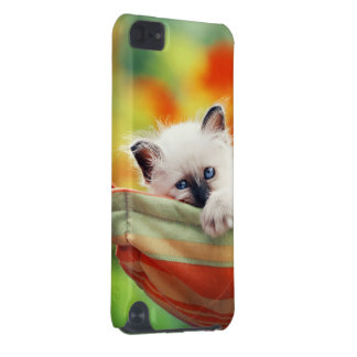 Katze iPod Touch 5G Hülle