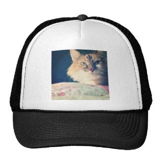 Katze Retrokultmütze