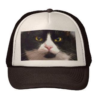 Katze Kultmütze