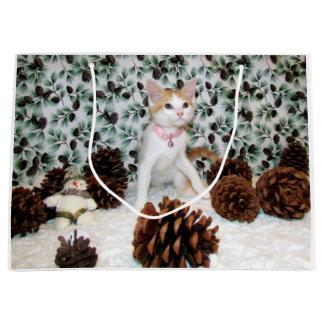 Katze, Kätzchen, Weihnachten, Rettung, Foto Große Geschenktüte
